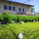 Hotel Pictures: Chambre d'hôtes La Haie Fleurie, Chevillard