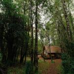 Huilo Huilo Cabañas del Bosque,  Huilo Huilo