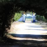 Quinta da Azervada de Cima,  Coruche