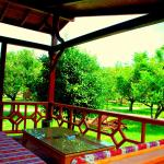 Baraka House, Cıralı