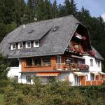 Hotel-Pension Thomé,  Hinterzarten