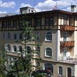 Soldanella,  St. Moritz