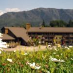 The Griz Inn by Park Vacation Management, Fernie