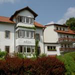 Hotel Pictures: Pension Waldesblick, Friedrichroda