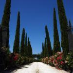 Casa Vacanze Burcinella,  Cortona
