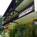 酒店图片: Appartements Lärchenhof, 巴德小基希海姆