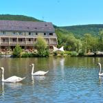 Hotel Pictures: Hotel Du Lac, Guebwiller