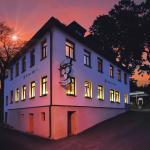 Hotel Pictures: Landhotel Weisses Röß`l, Adorf