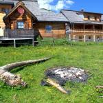 Foto Hotel: Lärchenhütte, Tauplitz