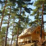 Hotel Pictures: Cabane Lodge Domaine du Lac Chambon, Murol