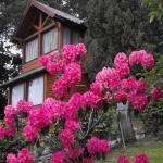 Vientos Del Sur, San Carlos de Bariloche