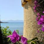 Hotel Pictures: Résidence Les Mandiles, Cargèse