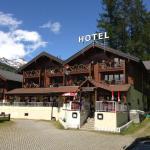 Hotel Pictures: Hotel Alpenhof, Oberwald