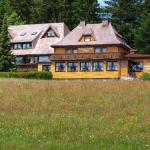 Hotel Pictures: Hotel Restaurant Peterle, Feldberg