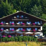 Fotos do Hotel: Berghof zum Predigstuhl, Bad Goisern