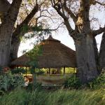 Ol Mesera Tented Camp, Mto wa Mbu