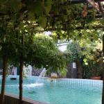 Villa Ciccio, Ischia