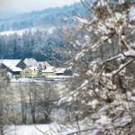 Hotel Pictures: Hotel 'Der Seehof', Hauzenberg