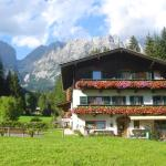 Hotel Pictures: Pension Apartment Steiner, Ellmau