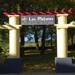 Hotel Pictures: Hôtel Restaurant les Platanes, Montfaucon