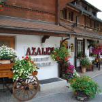 Hotel Pictures: Hotel Alpenrose, Schönried