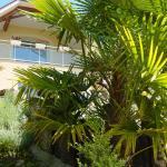 Hotel Pictures: Chambres d'Hôtes Coteaux Sud, Jurançon