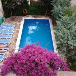 Pension Marbella, Roses