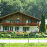 Hotel Pictures: Appartements Bischof, Mellau