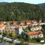 Hotel Pictures: Donna Burghotel am hohen Bogen, Neukirchen beim Heiligen Blut
