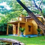Raintree, Dambulla