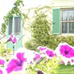 Antico Casale Santa Flora, Pitigliano