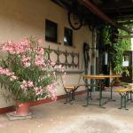 Hotel Pictures: Apartments Schramm, Eisenach