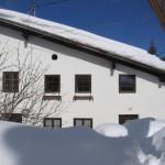 Φωτογραφίες: Ferienhaus Schmittenhof, Biberwier