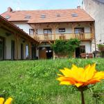 Hotel Pictures: Pension Rondel, Poděbrady