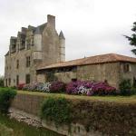 Hotel Pictures: Chateau de Vermette, La Chapelle-Gaudin