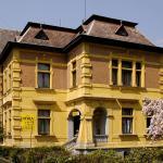 Vila Jehla, Česká Kamenice