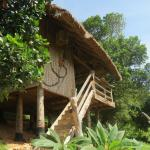 Tree Top Bungalows, Kep