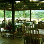 Palm Garden's, Kandy