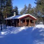 Ryen Hytteutleie - Cottages, Røros