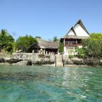 Asian Belgian Dive Resort,  Moalboal