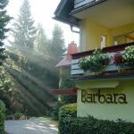 Hotel Pictures: Hotel Barbara, Warmensteinach