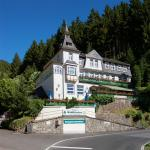Hotel Pictures: Flair-Hotel Waldfrieden, Meuselbach-Schwarzmühle