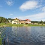 Hotellikuvia: Gasthof-Pension Nordwald, Hirschenwies
