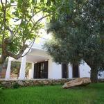 I Giardini di Demetra B&B, Galatone