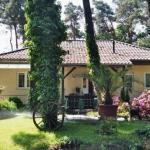Hotel Pictures: Pension An der Aue, Michendorf