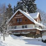 Pension & Restaurant Krakonoš, Harrachov
