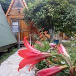 Oran Pansiyon Agac Evler, Cıralı