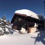 Hotel Pictures: Chalet Heimberg, Parpan