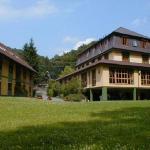 Hotel Pictures: Hotel Scheid, Schriesheim