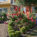 Hotel Pictures: Ferienhaus Schloss-Garten, Kapellen-Drusweiler